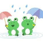 梅雨の湿気対策はどうする?部屋のクローゼット(押入れ)に使える除湿グッズを紹介