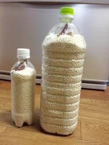 ペットボトル米