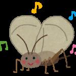 鈴虫とコオロギの鳴き声の違いは?動画で解説!